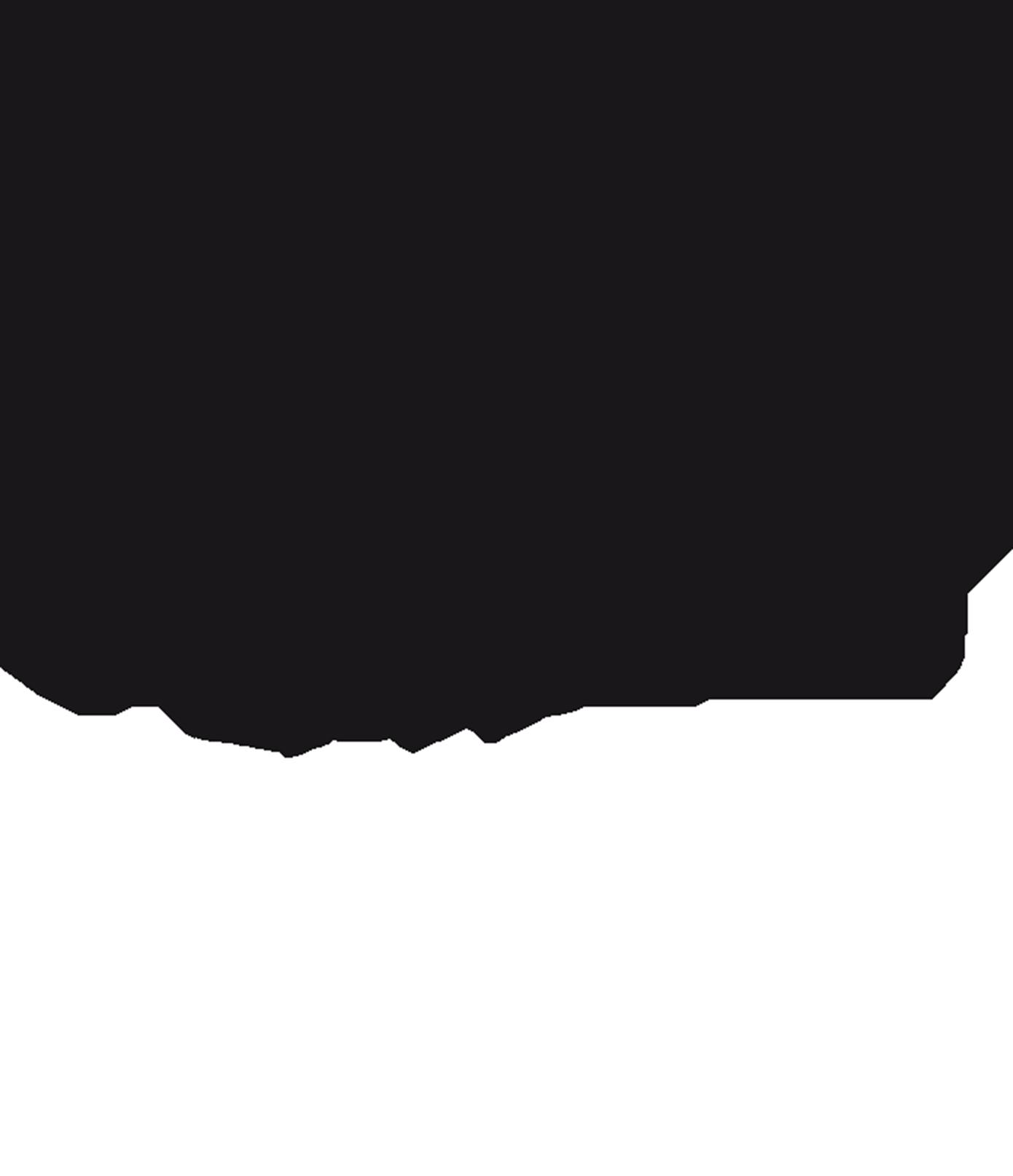 francisco-del-valle-logo@2x